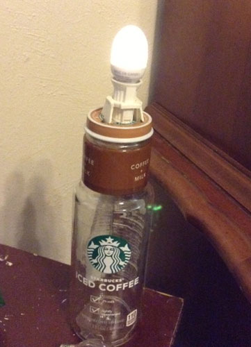 Starbuck lamp