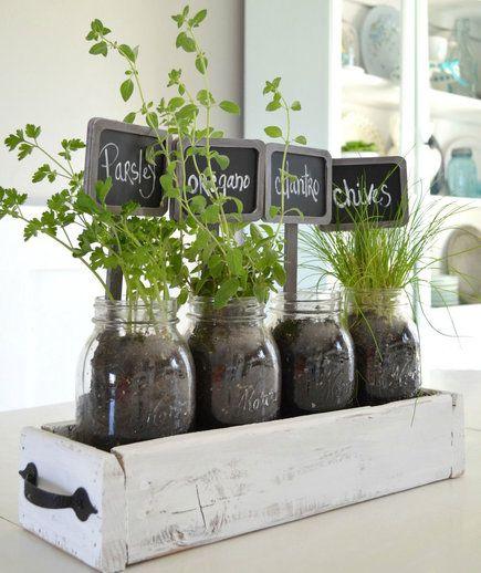 Create an indoor garden with glass bottles