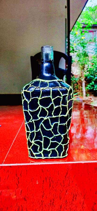 Recycled bottle art by KS Vishnu